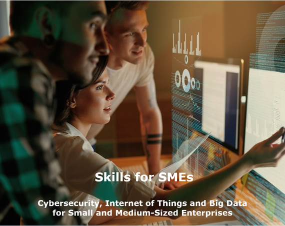 Skills for SMEs: A vision and roadmap to foster adoption of cybersecurity, big data and IoT